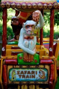 małpa na pociągu